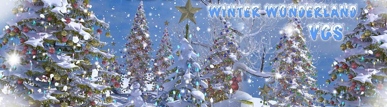 VGS WinterWonderland